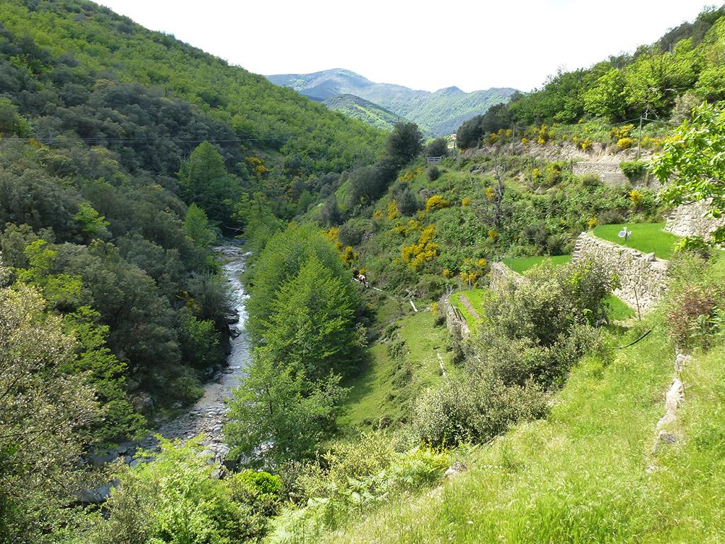 Vallée St André de Majencoules
